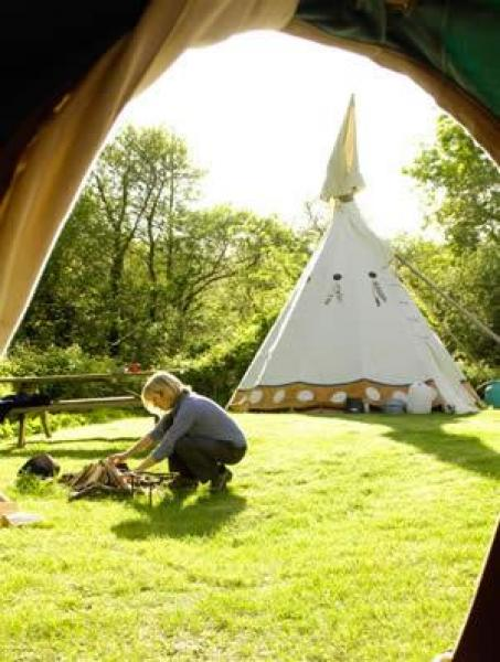 view from tipi