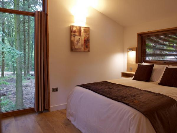bedroom with views of the forest