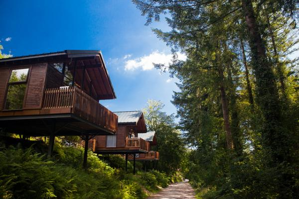 cabins in lovely setting