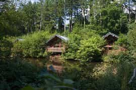 cabins around a millpond