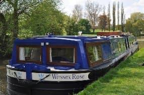 Wessex Rose