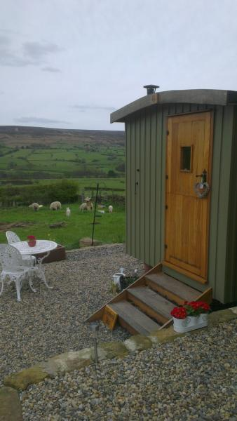 open views with sheep by hut