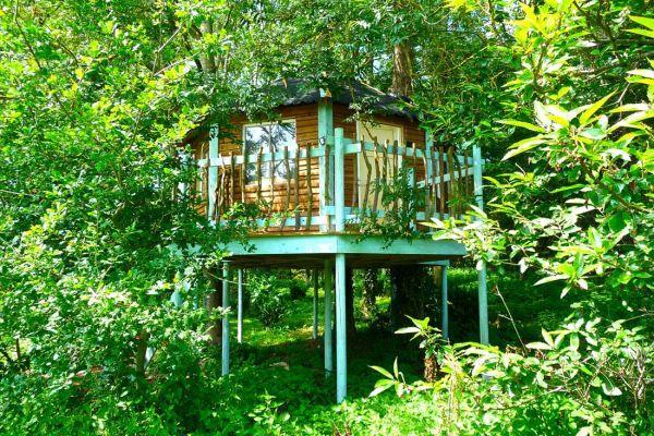 Tinker Tree House