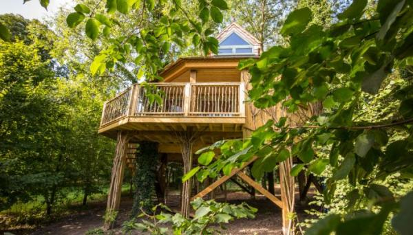 spacious and comfy treehouse