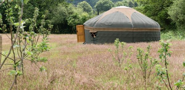 yurts in countryside