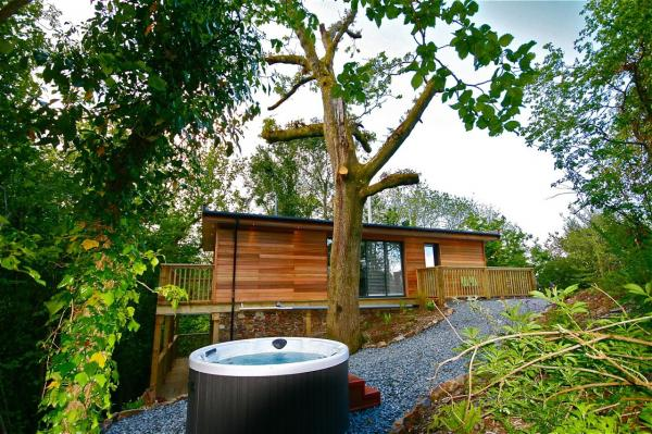 view of the hot tub to the tree house