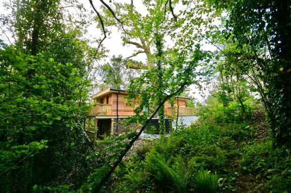 peaceful hideaway in woodland