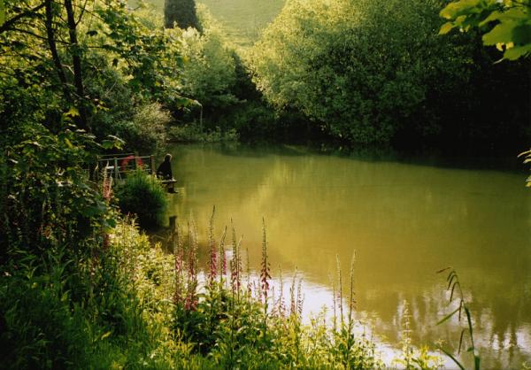 fishing lake at Sunridge