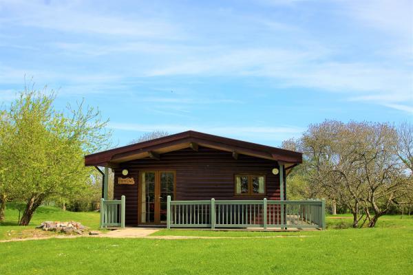 Barn Owl lodge in lovely setting