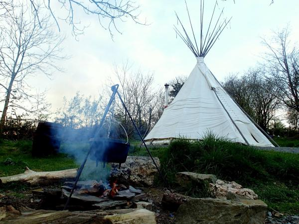 cook on an open fire