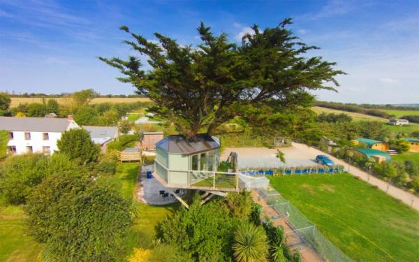 tree house 6 metres above ground