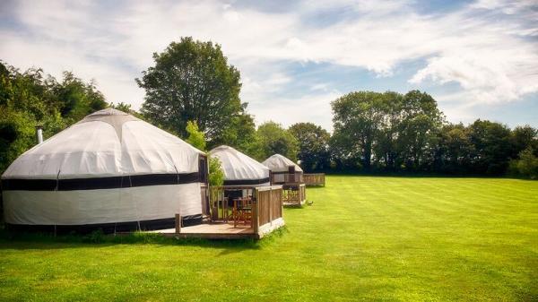 3 yurts in the paddock