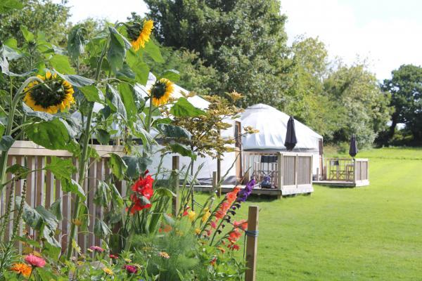 pretty garden by yurts