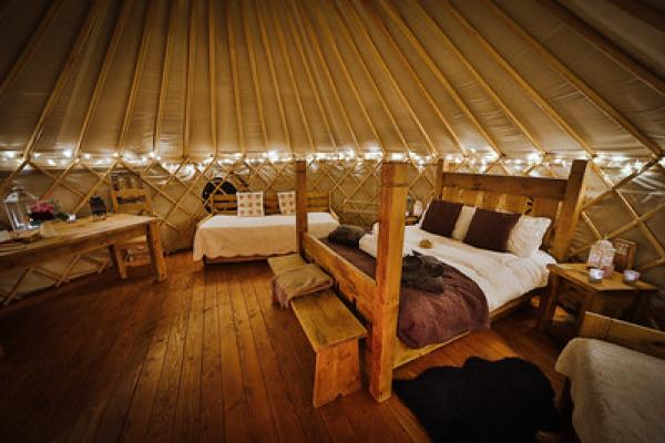 Blackberry yurt at night