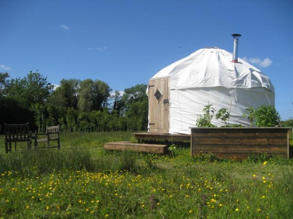 Mongolian style yurts
