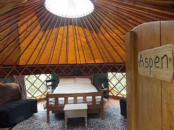 interior of Aspen
