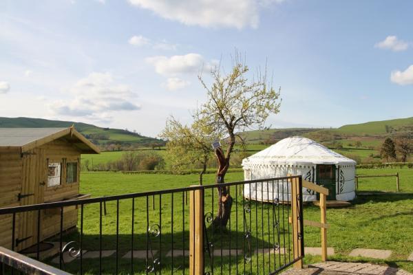 Cabin Connie and yurt Bronwyn