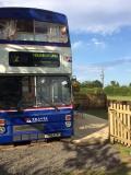 Billie Bus