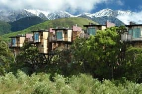 Treehouse holidays luxury treehouses in nz sisterspd