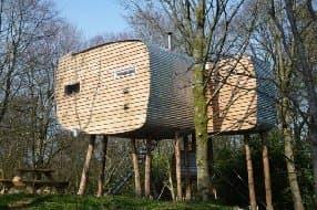unique treehouse design