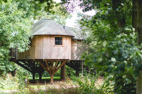 hidden woodland treehouse