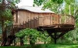 The Treehouse at The Woodlands