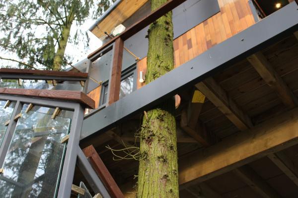 treehouse property