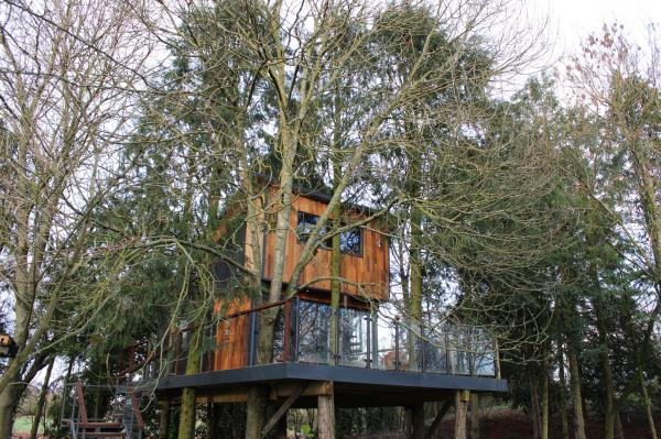 Trunkquillity treehouse