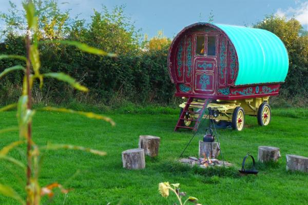 peaceful Ruby wagon