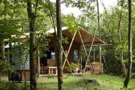 Acton Safari Lodge