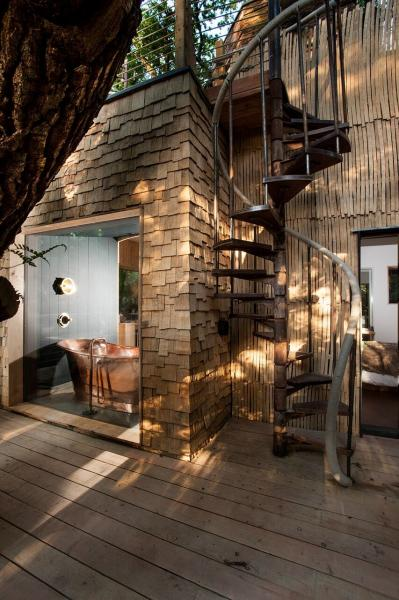 spiral stairs of the treehouse