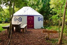 yurt at Plush Tent Glamping
