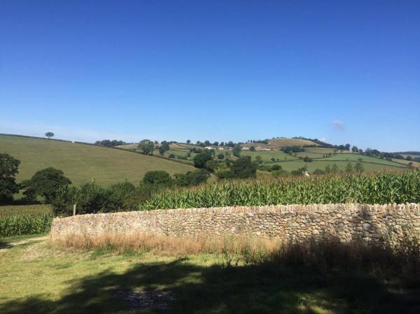 Uninterrupted rural views