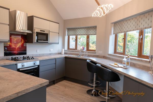 Modern Silver Birch kitchen