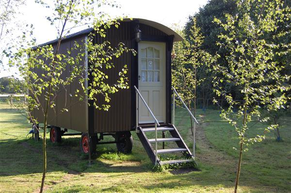 The Shepherds hut