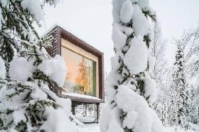 Arctic Treehouse