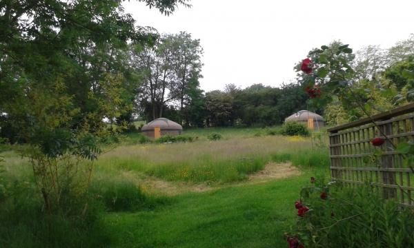 Glamping site in North Cotswolds