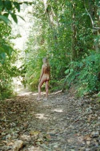 nature walks in the bush