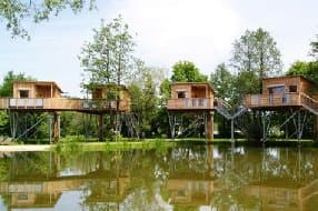 Futuristic looking tree houses