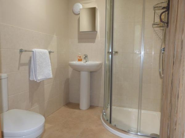 the ensuite shower room