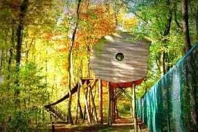 treehouse 5 metres above the ground
