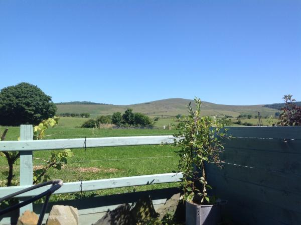 lovely view from Hedgerow Hut
