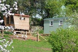 Orchard Wagon and bath house