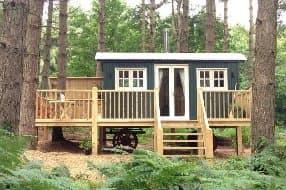 Keep Nutkin Tree cabin