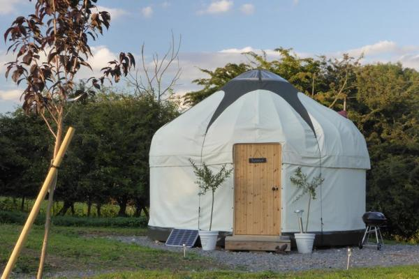 lovely yurt stay at Country Bumpkin