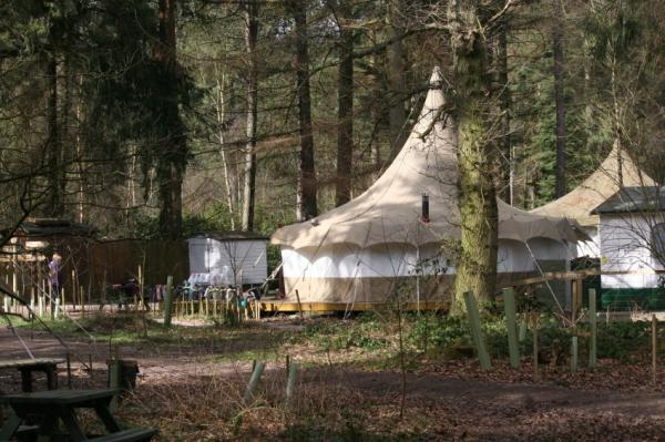 glamping in woodland