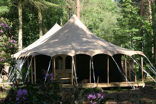 woodland tent