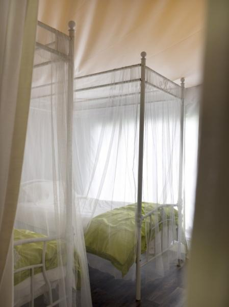 twin beds under canvas