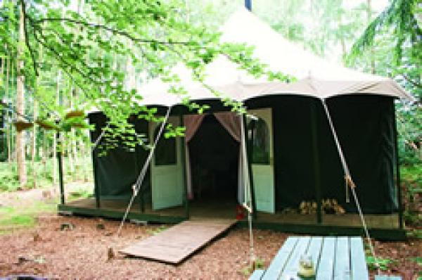 Woodland tent welcome.