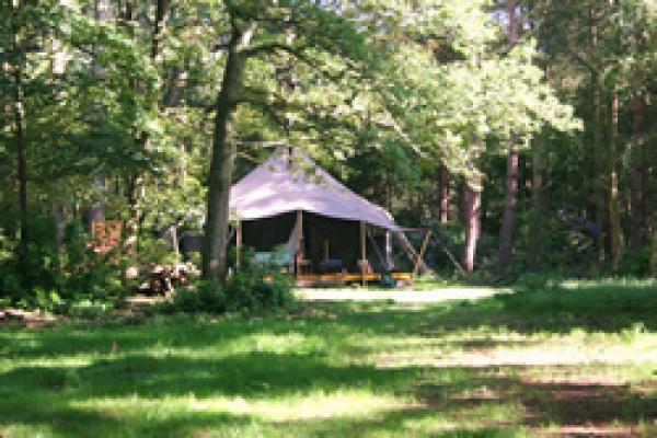 Luxury Lodge tent
